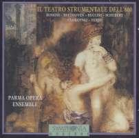 Il Teatro Strumentale Dell' 800