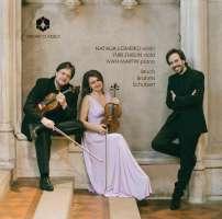 Brahms; Bruch; Schubert: Trios