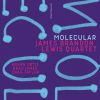 James Brandon Lewis Quartet: Molecular