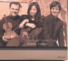 Schubert Piano Trio Op.100 / Brahms Piano Trio Op.101